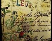 Les Fleurs, Flower and vintage letter collage print