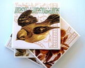 Ceramic Tile Coasters Set of Four, Vintage Birds and Flowers