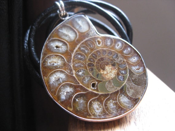 SALE mens necklace. ammonite necklace in sterling silver and black leather. fossil shell. mens jewelry.