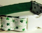 Buckle Collar - 1 Inch Wide - Custom Made - YOU pick the fabric