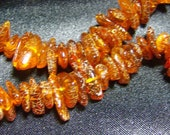 Genuine Amber Chip 16 Inch Bead Strand 7mm to 13mm