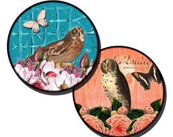 Wise Owls collage sheet - 1 inch Circles/25mm/bottle cap images