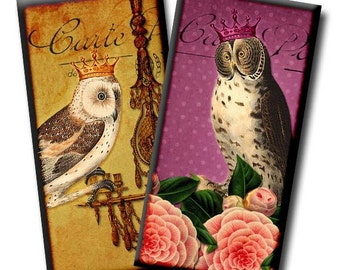 Wise Owls No2 - Digital collage sheet - 1 x 2 inches/Domino images