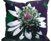 SALE-Astrantia -Floral Pillow