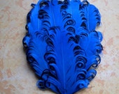 1 Royal Blue and Black Feather Pad