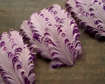 Set of 5 Feather Pads - Pink-Berry Curled Goose Feather Pads
