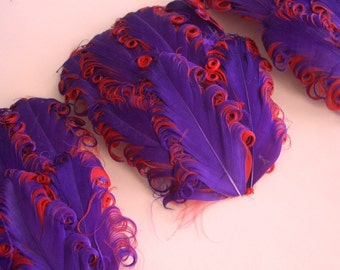 SET OF 5 - Feather Pads - Purple on Red Curled Goose Nagorie Feather Pad