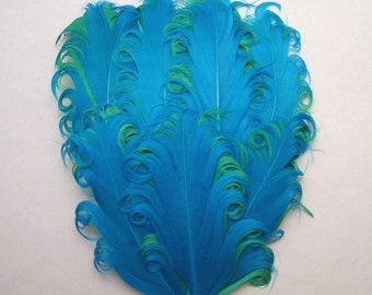 Turquoise on Green Curled Goose Feather Pad