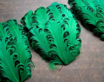 SET OF 5 Kelly and Black Curled Goose Feather Pads
