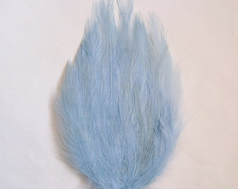 1 Light Blue Hackle Feather Pad - Feathers