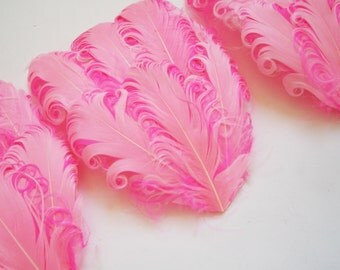 SET OF 5 - Light Pink on Hot Pink Curled Goose Feather Pad