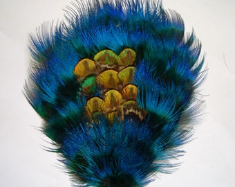 1 Peacock Plumage Feather Pad in Turquoise Blue and Golden Green - RARE STYLE
