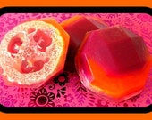 Soap - Loofah Soap - Sex on the Beach Scented - Exfoliator Gift for Mom