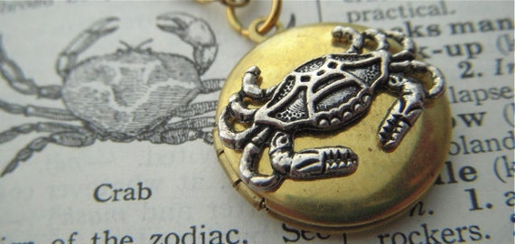 """Tiny Crab Locket Necklace Round Brass Rustic Primitive Antiqued Finish Small Size Mixed Metals 18"""" Chain Included Girl's Steampunk Necklace"""