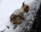 Knitted Turtleneck Dog Sweater with Cables on sale