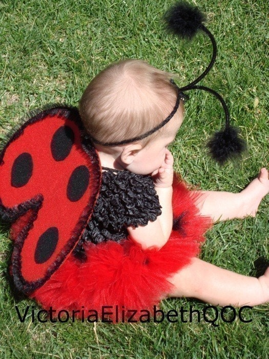 Diy Ladybug Costume Kit No Sew Infant By Victoriaelizabethqoc