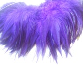Purple  Feathers Extension Friendly Set Of (24)