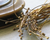 brass headpins- qty 50- 24 gauge
