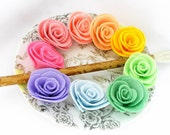 Color Wheel - 9 Felt Roses
