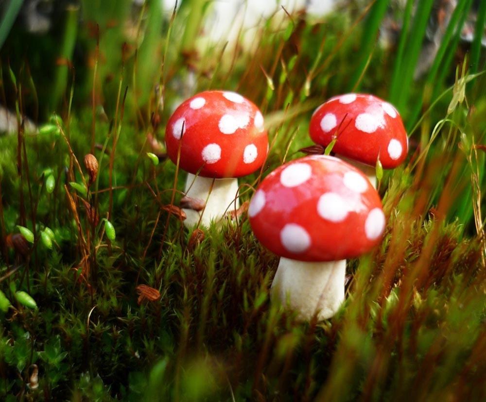Three Mini Red And White Spotted Ceramic Mushrooms
