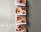 Set of four 5 x 6.5 Blank Clementine Notecards - IN STOCK gift the card FRAME the print