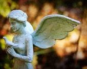 Garden Angel 8x12 Digital Print