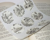 Elegant French Toile Stickers/Envelope Seals
