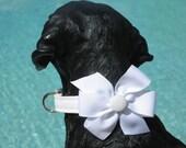 SIMPLE WHITE WEDDING DOG COLLAR WITH BOW SIZE MEDIUM