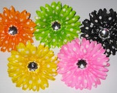 SALE: BOGO Free Gerbera Daisy Bling for Dog Collars, Your Choice of Colors