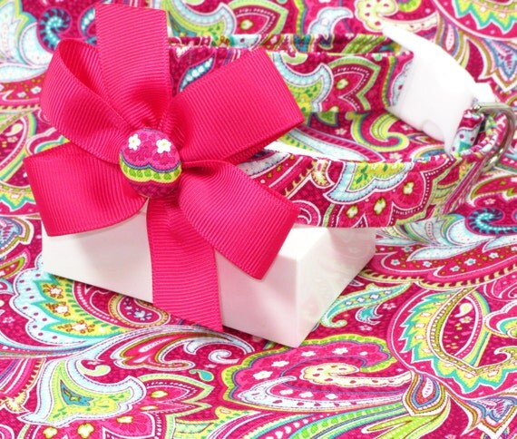 Pop of Pink Paisley Dog Collar with Bow, Choose Your Size
