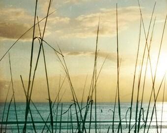 Beach Dreams V - Art Print
