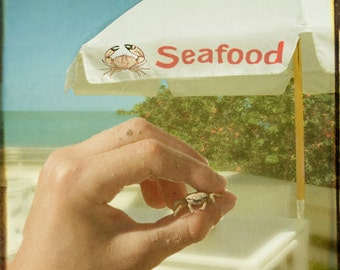 Seafood - Art Print. Whimsical photography, collage, humor, beach photography.  Beach crab lunch.