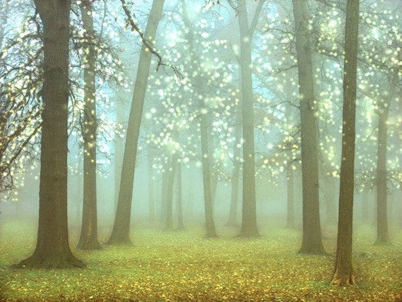 Wonderland Landscape Photography 8x10.  Turquoise, sparkling trees, kids room decor, woodland, forest photography.