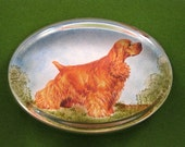 Blond Cocker Spaniel Dog Portrait Oval Glass Paperweight Home Decor Dog Lover