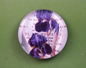 Spring Purple Iris Floral Mini Round Glass Paperweight Floral Home Decor