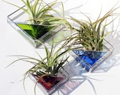 3 Stained Glass Air Plant Holders - Sconce - 3 Sizes - Simple, Geometric, Modern - Choose your Color