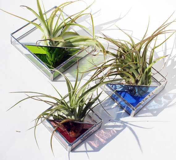 3 stained glass air plant holders sconce 3 sizes by laglass for Geometric air plant holder
