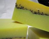 Kiwi Sunsweet handmade SOAP vegan moisturizing superfatted real kiwi seeds