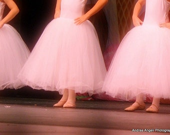 Pink Dancers. Matted fine art photograph.