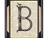 B ALPHABET LETTER with Beautiful Blue or Yellow Bird Victorian Initial Monogram Ornate Celtic art print wall decor on vintage dictionary 5x7