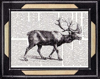 ELK art print antique illustration woodland forest animal on repurposed vintage dictionary text book page deer black white wall decor 8x10