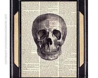 SKULL art print ANATOMICAL human skull anatomy bones medical science black white vintage dictionary book page illustration wall decor 8x10