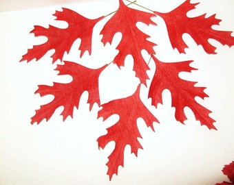 "Vintage Millinery Flower 7 1/2"" RED Velvet Fabric Oak Leaves DIY Wreath Ornament Christmas Trim"