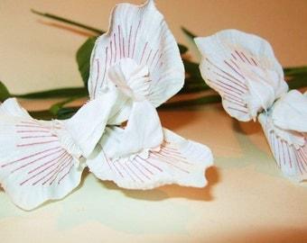 3 Vintage Millinery Flower White Dutch Iris Wired Stem Plum Purple Stripes