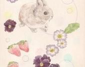 A little bunny - postcard