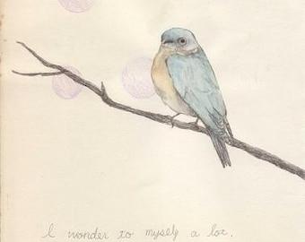 I wonder... - postcard