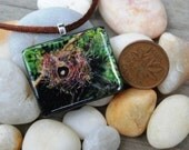 Tiny Bits of Nature - Abandoned Nest - Necklace - Large
