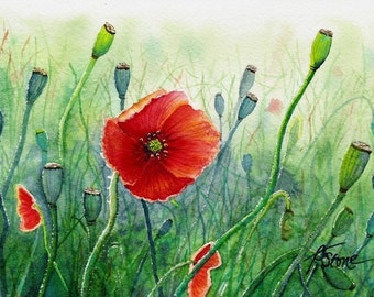 Tiny Bits of Nature - Poppies - Matted Print from Original Watercolor