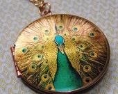 The Elegant Peacock Locket - Vintage