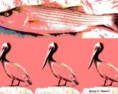 Pelicans and Fish Art, Aquatic Nautical, Pink Digital Print, Collage Wall Hanging, Home Decor, Wall Hanging, 5 x 7 OR 8 x 10, Giclee Print